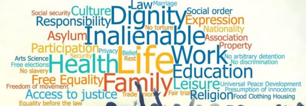 Il manuale per la difesa dei diritti umani