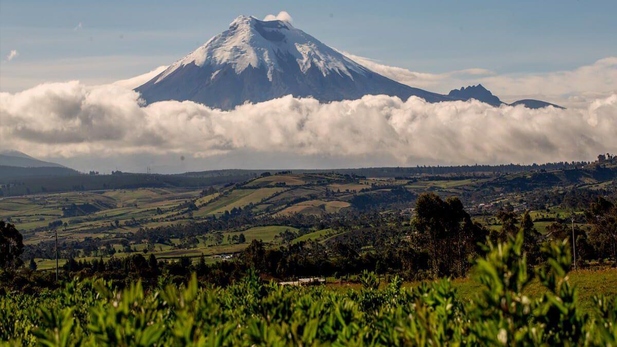 Come la Costituzione dell'Ecuador ha forgiato i diritti Fondamentali della Natura