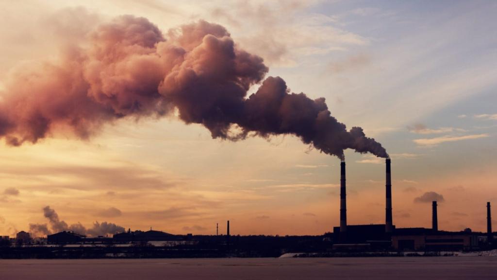 L'inquinamento non ha prezzo