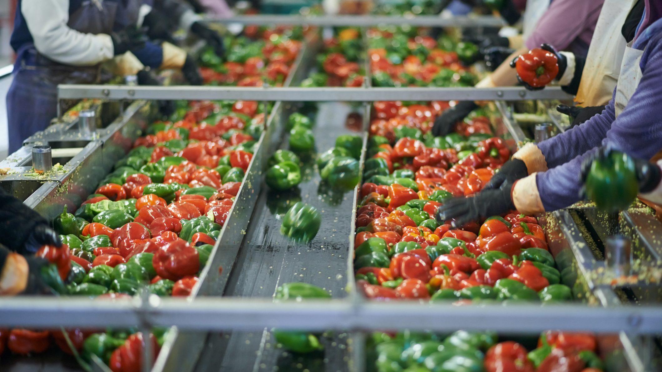 Prepariamoci alla crisi del mercato alimentare