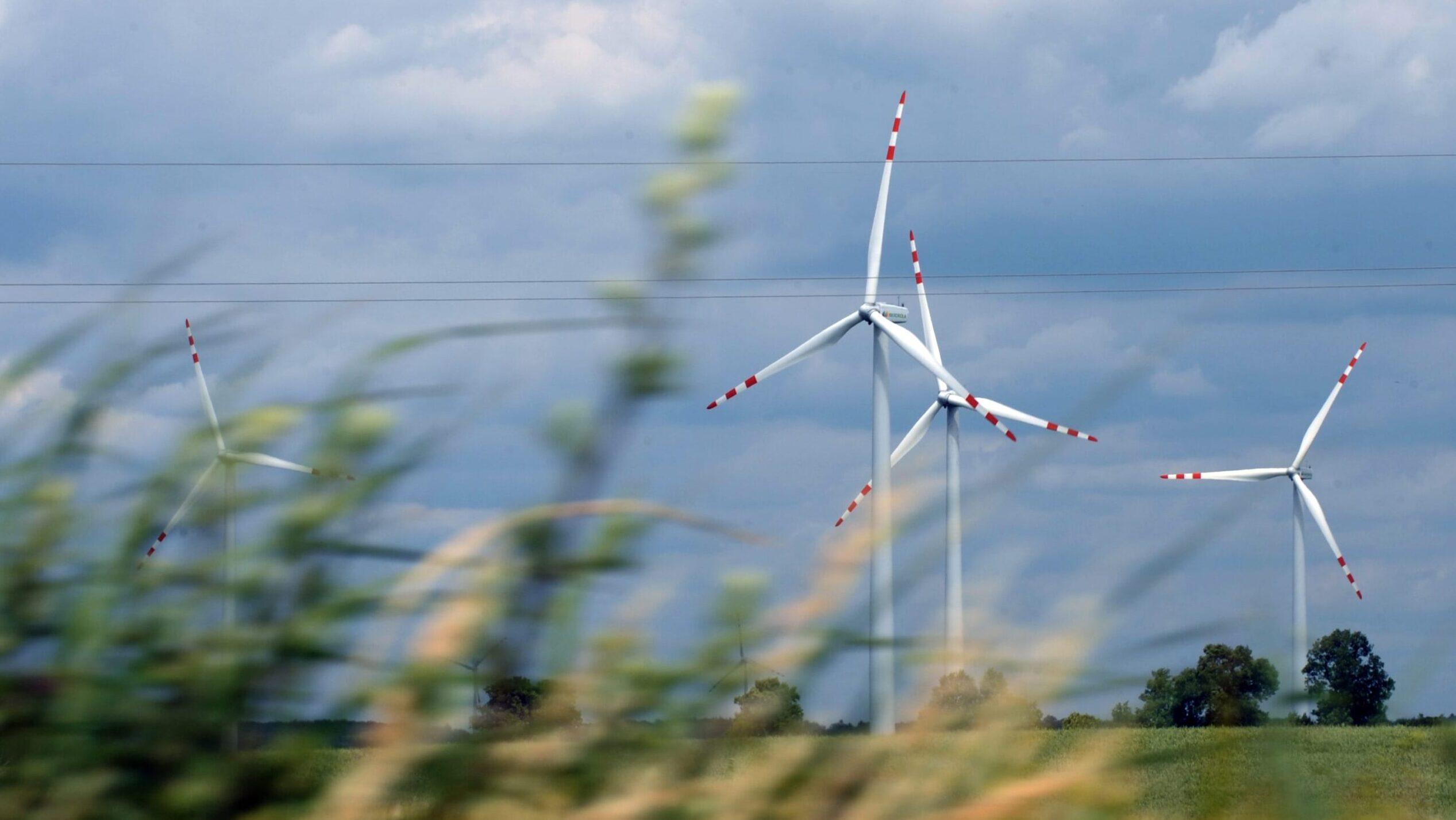 È possibile salvare le rinnovabili dal capitalismo?