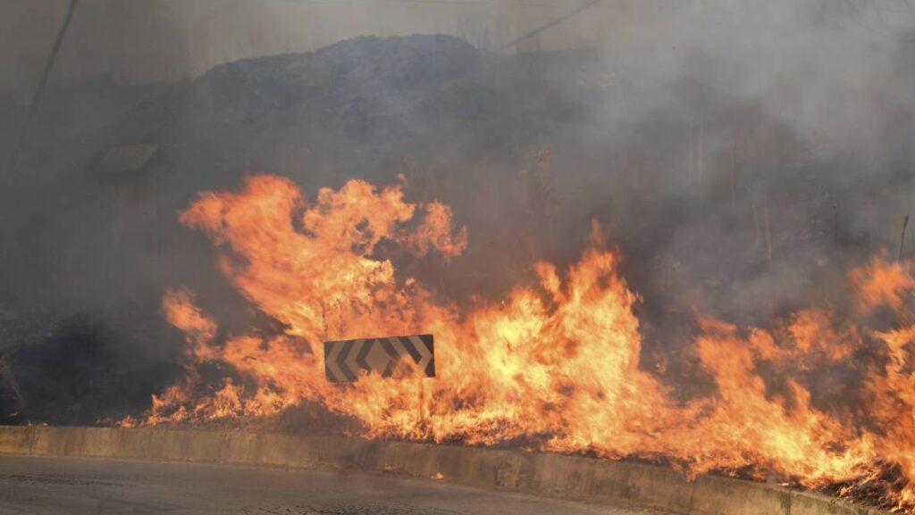Incendi, il Sud brucia nella totale impotenza e assenza dello Stato